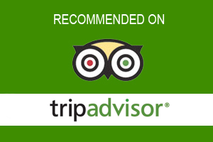 Cancun Airport Transportations reviewed on tripadvisor